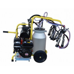Aparat de muls vaci cu 2 posturi si 1 bidon aluminiu 40L EDMB2+1A40 cu motor pe benzina
