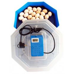 CLEO 5TH Incubator electric 60 oua gaina - 42 oua curca - 50 oua rata - 30 oua gasca - 150 oua prepelita