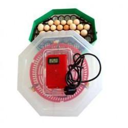 CLEO 5DT Incubator electric cu dispozitiv de intoarcere 41 oua gaina - 74 oua prepelita